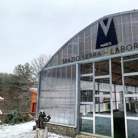 Mabos - Museo d'Arte del Bosco della Sila