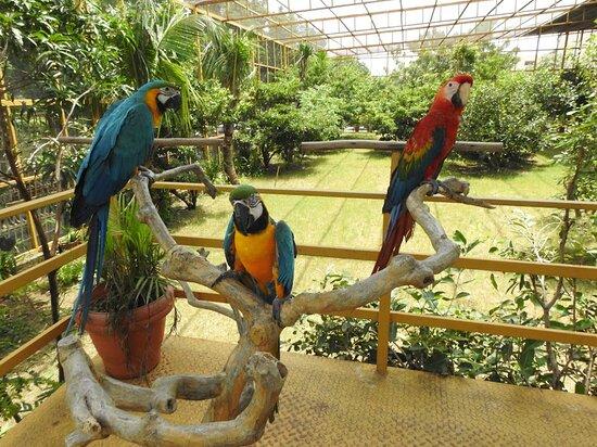 Kisna Nature Park