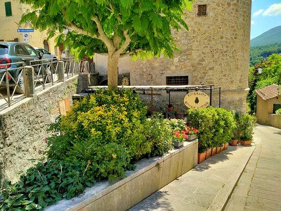 Osteria del Merlo  – Bild von L Osteria del Merlo, Cetona - Tripadvisor