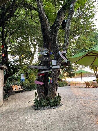 Playa Ocotal, Costa Rica: dining on the beach