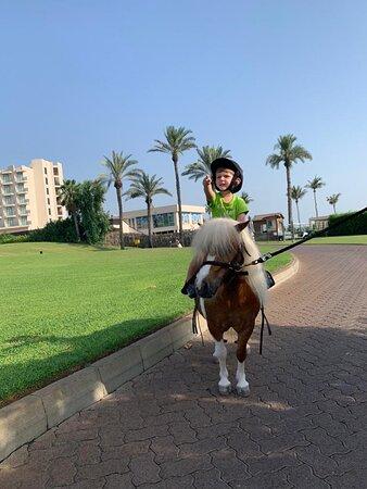 Jebel Ali, United Arab Emirates: ...