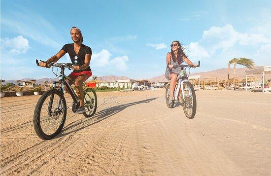 Ayla Cycle Hire