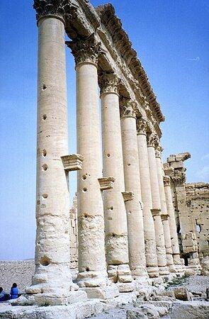 Συρία: Affascinante Palmira: Come sara' adesso??? (Siria)