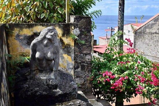 Martinique Shore Excursion - Unmissable Martinique North tour