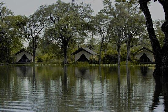 Mana Pools National Park Photo