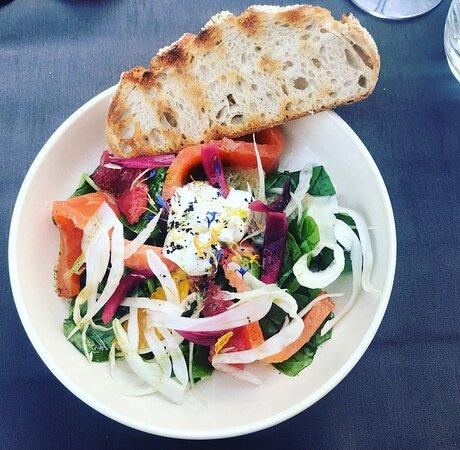 Entrée : salade de saumon gravlax aux agrumes et fenouil, condiment pickles, tzatziki aux fines herbes et tranche de pain toasté
