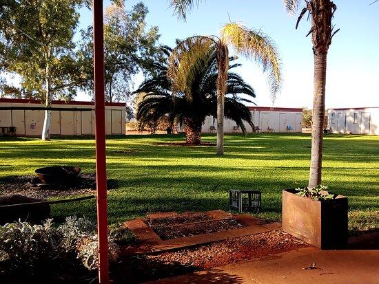 Wiluna, Úc: The finest grass for miles round!