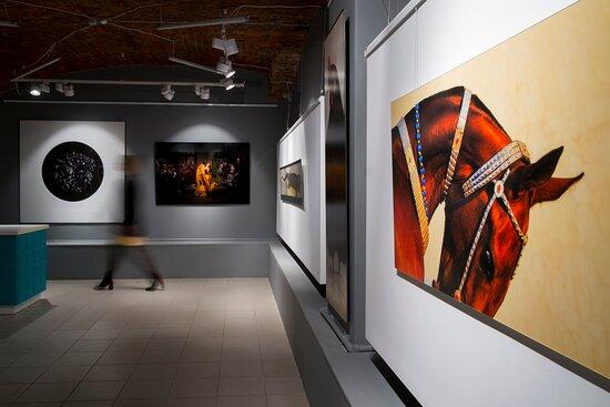 Belaya Raduga Gallery