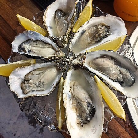 Oysters are back! 🥂