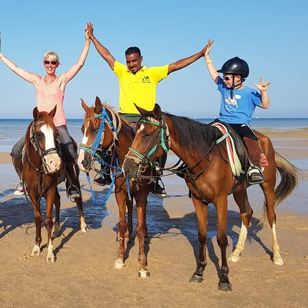 Memo Horse Club