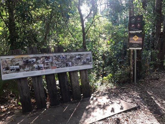 Buderim - Palmwoods Heritage Tramway