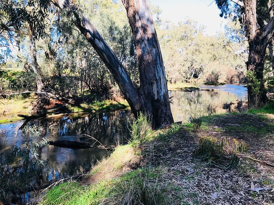 Axedale River Reserve