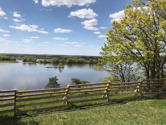 Spring Lake Park Reserve