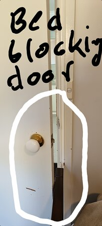 Grindelwald, Australia: The beds blocks the door from closing. Obviously didn't bother to measure before ordering.