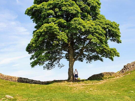 Northumberland National Park Photo