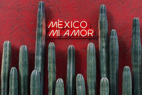 Traslado privado de Zacatecas a Monterrey