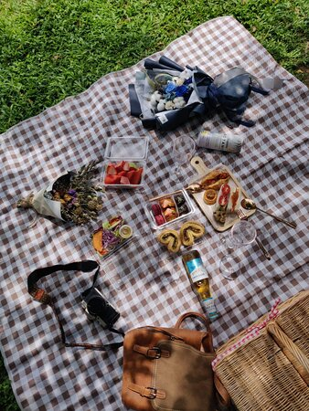 Chilling for picnic