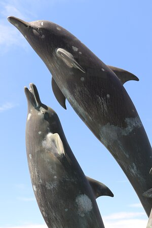 7.  Dolphin Sculpture & Water Feature, Barmouth