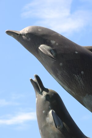 8.  Dolphin Sculpture & Water Feature, Barmouth