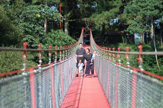 Lido Adventure Park