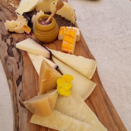 vari tipi di formaggi toscani