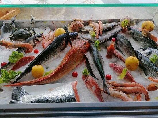 Fish of the day Best fish Fresh fish