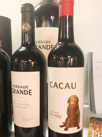 Excellent wine tasting in Alentejo