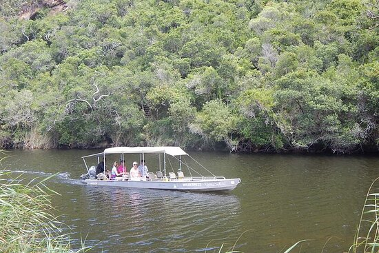 Touw River Boat Cruise - Wilderness National Park