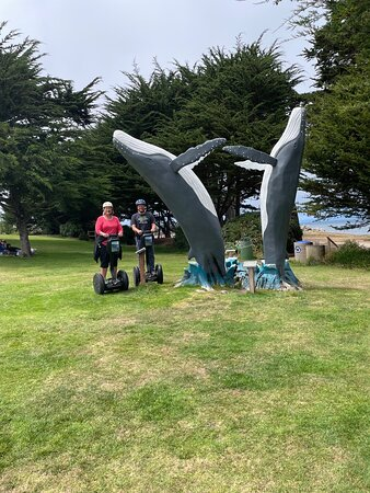 The Tour group posing in front of a dead tree turned into a wooden whale sculpture. - Picture of Segway Tours Monterey, Pacific Grove - Tripadvisor
