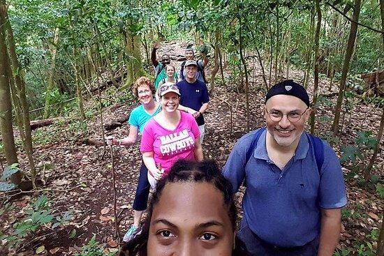 Esploratore della foresta pluviale tropicale a St. Kitts