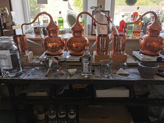 Wirral Gin School