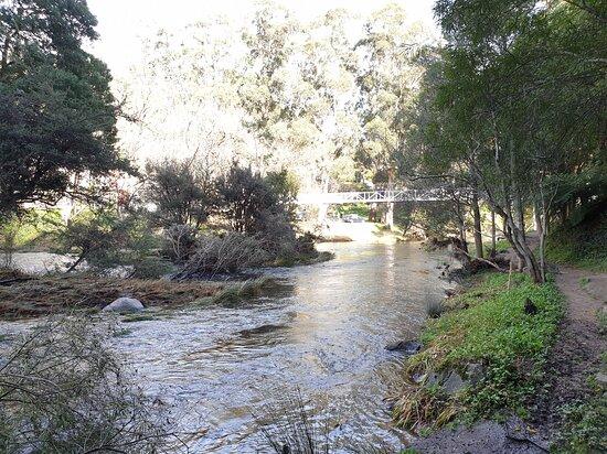Warburton Swing Bridge