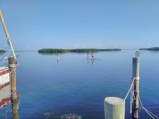 Longboat Key Paddleboard and Kayak