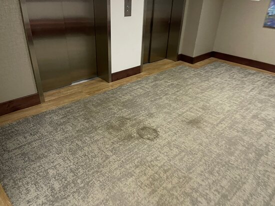Heavily stained carpets.