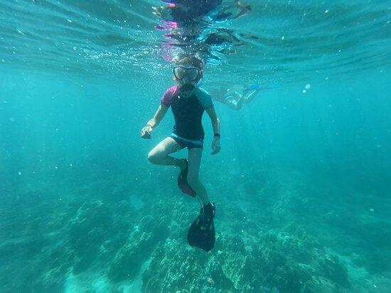 Molokini Crater plus Turtle Town Snorkeling 4-hour Tour Φωτογραφία