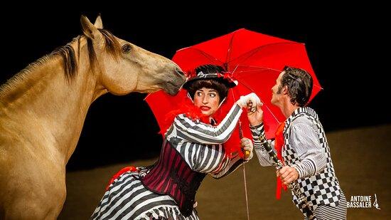 Théâtre Equestre de la Pommeraye