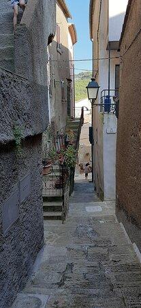 Foto Isola Del Giglio