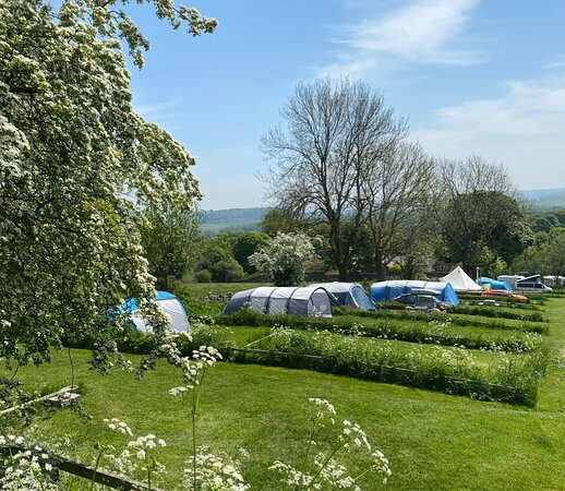 View from Hilltop and Hillside electric pitches -