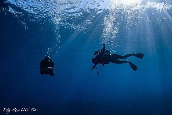 Balade sous-marine à canyon Site de plongée à l'ouest de la Réunion.  #974 #iledelareunion #narkozplongee #alleaumenicolas #lavieestbelle #plongéeiledelareunion #moniteurdeplongee #centredeplongée #explorationsousmarine #kittyrose