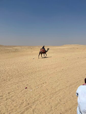 8-Hour Private Tour of the Pyramids, Egyptian Museum and Bazaar from Cairo: Camel Riding