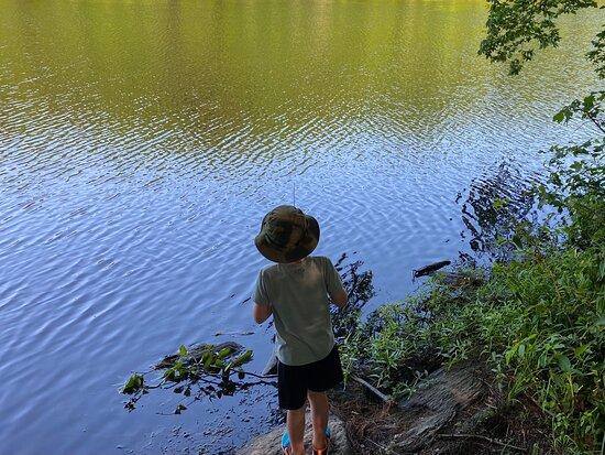 Shelton Lakes Recreation Path