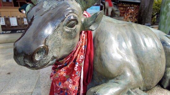 合格祈願の絵馬がいっぱい。学問の神様、波乗り祈願【神社】綱敷天満宮/兵庫県神戸市
