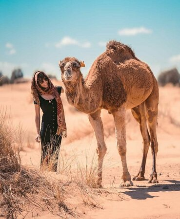 Embrace the Berber tradition  Contact us now! +212 639-032537 Pamper yourself in a traditional Berber Desert Camp.    Enjoy typical meals, craftsman furniture and comfortable beds. Feel the ancient desert spirit and relax yourself on the handmade pufs by the fire, singing and having fun with us