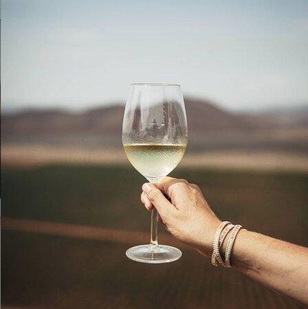El Martes 6 de Julio, el patio se llena de amigos, vino y  comida!! Estamos felices porque nos visita Vinícola Regional de Ensenada; directo desde la Original Ruta del Vino, en el poblado de San Vicente Ferrer, Baja California. Tendremos un menú muy especial a cargo de Marco Margain.. Ven y disfruta de la pasión por el campo, la uva y el vino. 6 de Julio 8 pm Reserva vía  WA +52 55 8425 6533