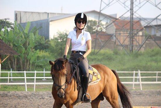Ditya Horse Land