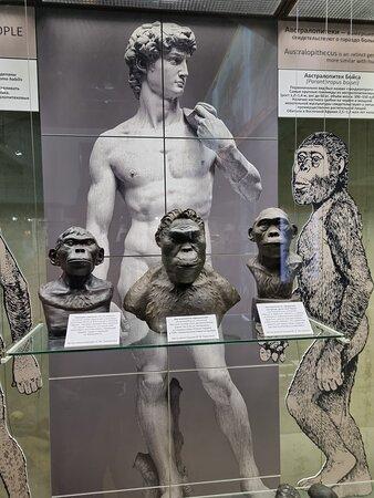 🌹 – Billede af State Darwin Museum, Moskva - Tripadvisor