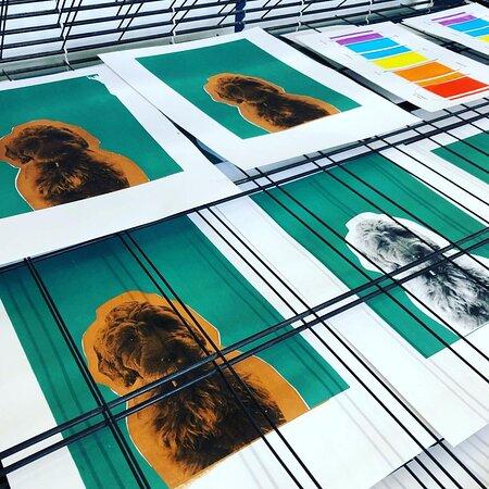 Double Elephant Print Workshop