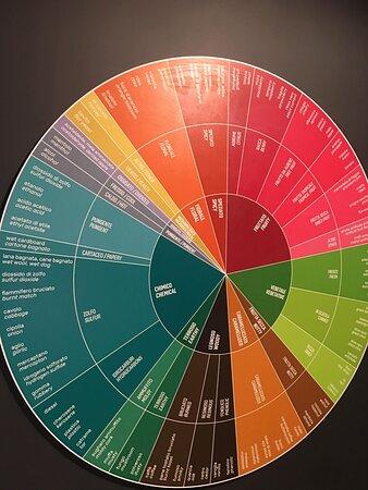 Skip the Line: Mondodelvino Ticket Wine Experience: Info e tabelloni varie