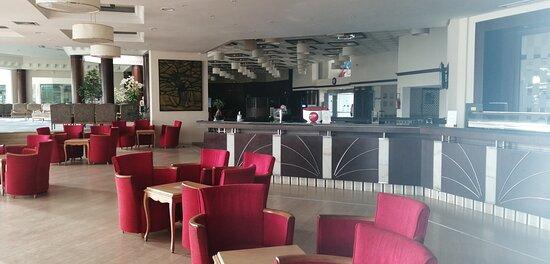bar principal et salon