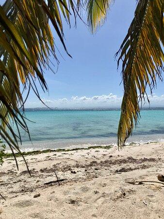 Big Falls, Belize: Day trip: West Snake Caye